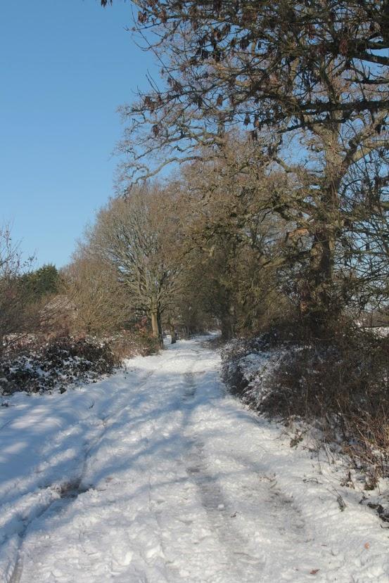 Winter Scenes from our parish | Shaw-cum-Donnington